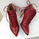 Женские красные ботильоны из натурального питона, фото 4