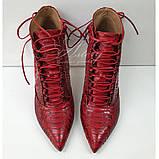 Женские красные ботильоны из натурального питона, фото 2