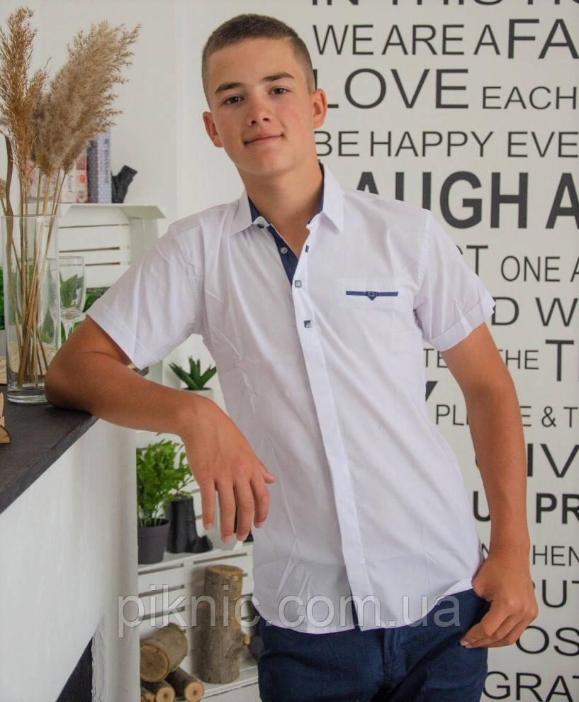 Рубашка школьная белая 11,16 лет. Короткий рукав для мальчиков, подростков Турция