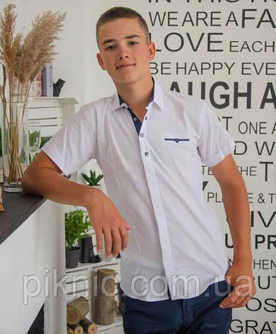 Рубашка школьная белая 11,16 лет. Короткий рукав для мальчиков, подростков Турция, фото 2