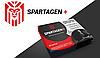 Spartagen+ (Спартаген+) – капсулы для потенции