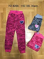 Спортивные брюки утепленные для девочек оптом, Active Sport, 116-146 рр