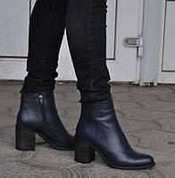 Ботинки, ботильоны женские демисезонные из натуральной кожи, синие. Размеры 37, 39, 40. Viscala 77980.