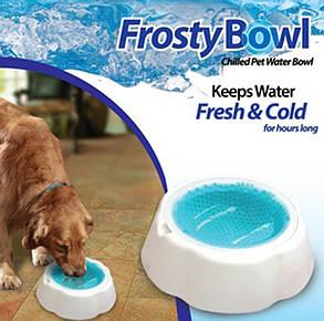 Frosty Bow l миска охлаждающая для воды для домашних животных, фото 2