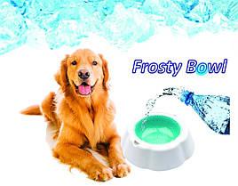 Frosty Bow l миска охлаждающая для воды для домашних животных, фото 3