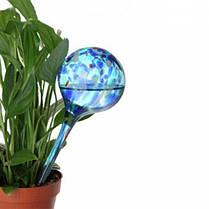 Лейка колба Aqua Globe  автополив цветов, фото 2