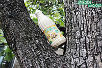 Органическое ореховое молоко (грецкий орех) домашнего производства 1 литр С мёдом