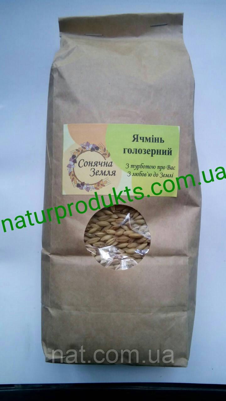 Ячмень голозерный для проращивания, 1 кг (выращен без применения агрохимии)