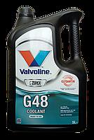 Антифриз Valvoline ZEREX G48 готова -38°C, 5л