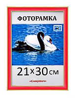 Фоторамка пластиковая А4, 21х30, рамка для фото, дипломов, сертификатов, грамот, картин, 2313-20, фото 1