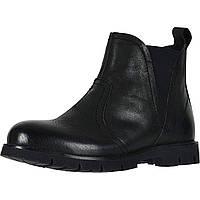 Ботинки David Tate Reserve Black - Оригинал