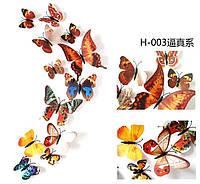 Набор бабочек с магнитом 12 шт (  цветные2)