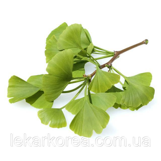купить гинкго белобу оптом листья москва питер киев украине аптеке гинко билоба настойку капли лекарство