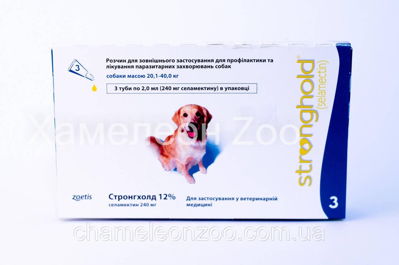 Стронхолд 20-40 кг для собак 1 пипетка 12% 240 мг