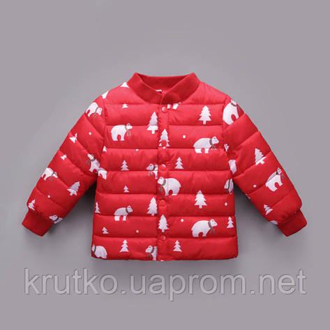 Демисезонная куртка для девочки Умка Berni, фото 2