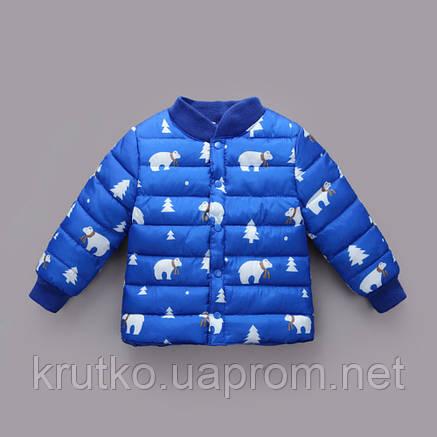Демисезонная куртка для мальчика Умка, синий Berni, фото 2