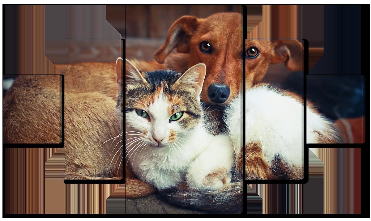Модульная картина Interno Холст Собака и кот  152х85см (R1680L)