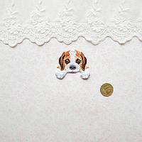 Термонашивка Аппликация для Одежды и Декора Щенок Бигль с Белыми Лапками 4*3.5 см, фото 1