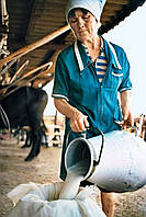 Лавсан молочный ГОСТ 115 г/м2