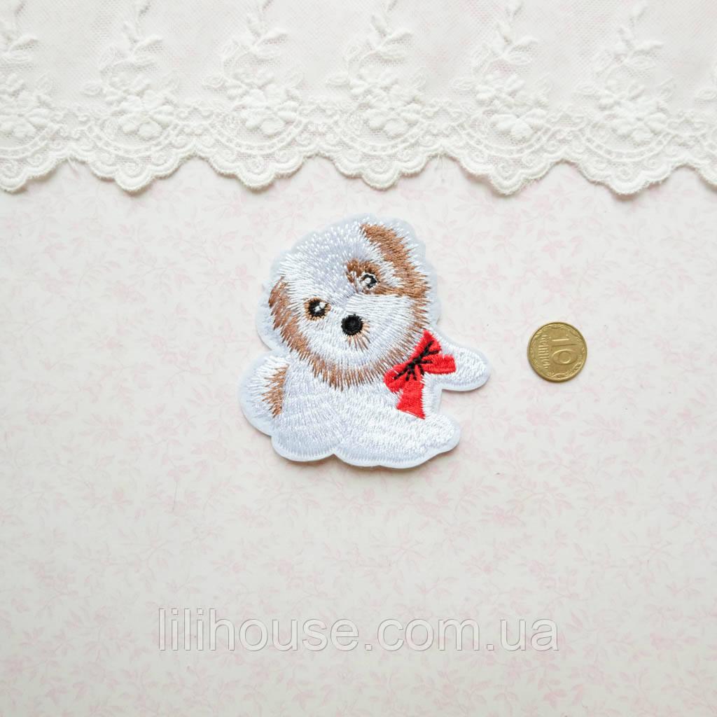 Термонашивка Аппликация для Одежды и Декора Белая Мальтипу с Красным Бантом 7*6 см
