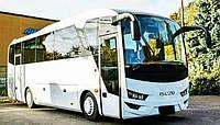 Автобус Isuzu белый 37 мест