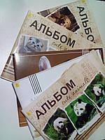 Альбом А4 60 листов 120 (100) г/м², скоба УЦЕНКА