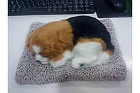 Собачка на подушке G1 (80)