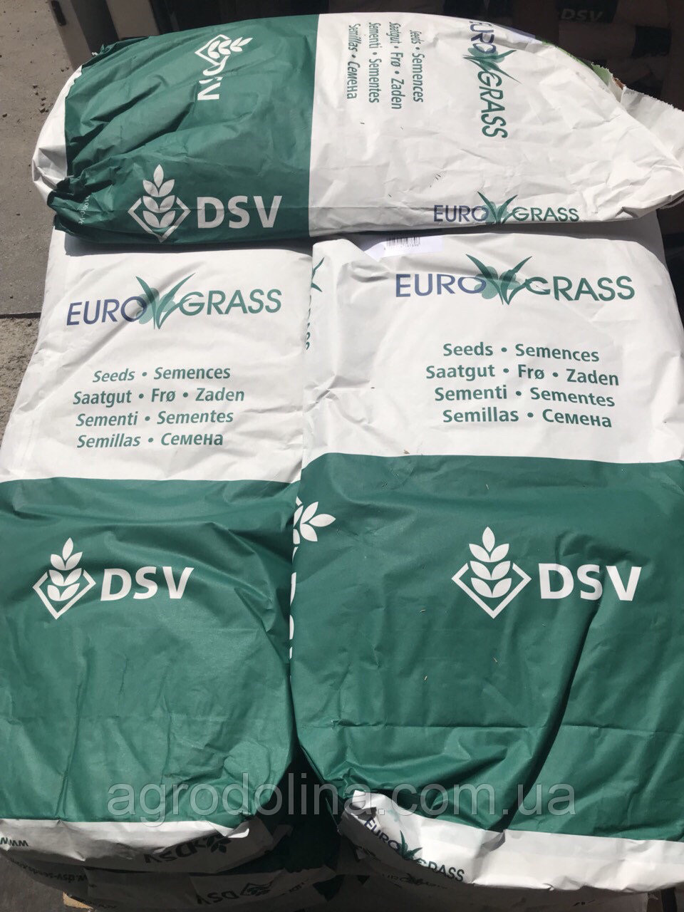 Газонная трава DSV (Euro Grass) Shade Теневая 10 кг, Германия