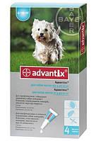 Адвантикс для собак весом  4-10 кг