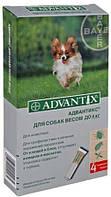 Адвантикс для собак  до 4 кг