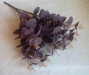 Букет эвкалипта большой, пурпур