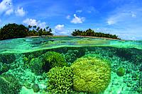 Фотообои флизелиновые 3D Природа 375х250 см Коралловый риф (MS-5-0200)