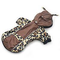 Курточка для собак Лео, фото 1