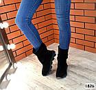 Демисезонные женские сапоги черного цвета, натуральная замша, фото 2
