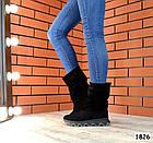 Демисезонные женские сапоги черного цвета, натуральная замша, фото 3