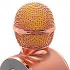 Беспроводной Bluetooth караоке-микрофон DM Karaoke WS668 + чехол, фото 7