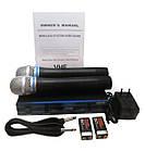 Радиосистема DM EW 100 и 2 беспроводных микрофона | радиомикрофон | беспроводной микрофон, фото 6