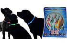 Светящийся ошейник для собак в виде жемчужин Pet's simulated pearl gleamy necklage / 185 мм, фото 4