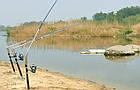Самоподсекающая удочка спиннинг FisherGoMan 2.1 метр + активатор клева в подарок, фото 10