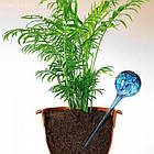 Шары для полива растений Аква Глоб | лейка колба Aqua Globe | автополив цветов, фото 4