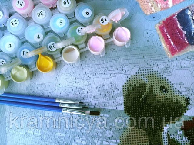 Алмазная Картина-раскраска по номерам