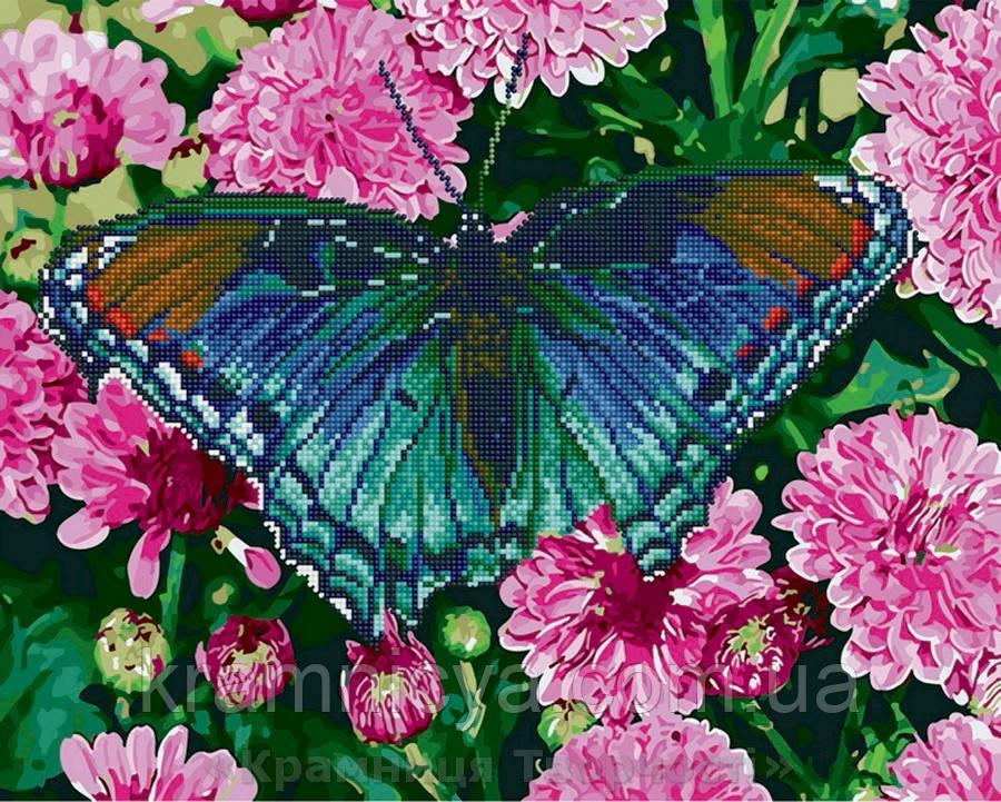 Алмазная картина-раскраска 40х50 Бабочка в цветах, Rainbow ...