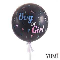 Шар-гигант черный Boy or Girl на определение пола ребенка с декором вопросительные знаки