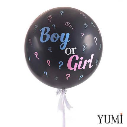 Шар-гигант Мальчик или девочка (какой пол ребенка?) Boy or girl ?, фото 2