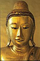 Постер Золотой Будда (golden budda), 40.6х50.8 см