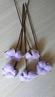 Хлопок сухоцветы для декора и рукоделия (Бутон хлопка натуральный на ножке)