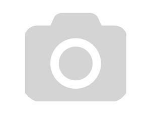 Автоколонки TS 1695 (ОПТОВАЯ цена от 12 шт)
