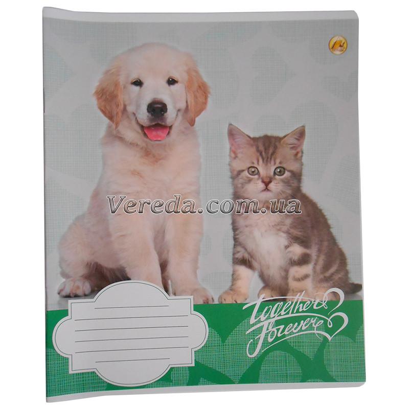 Тетрадь школьная в косую линию 12 листов Тетрада, Кот и пес