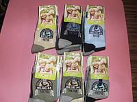 Детские  носочки  оптом для мальчиков LeonFit