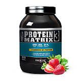 Протеин PROTEIN MATRIX 3 1000g Вкус: Черника с творогом, фото 2